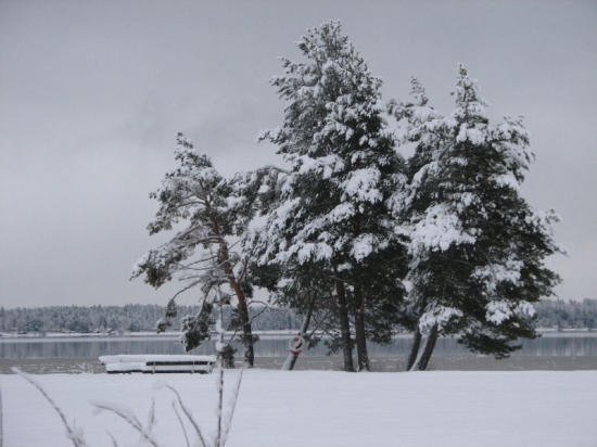 Infor julhelgen ingen vit jul i sodra sverige