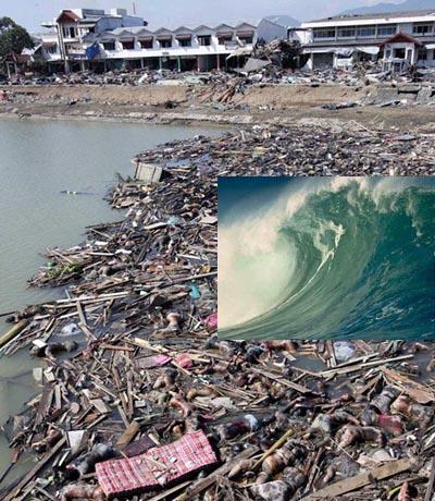 Kraftigt skalv i indiska oceanen